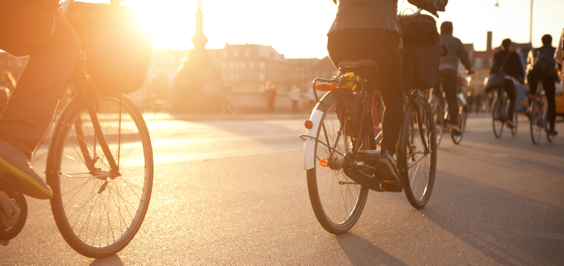 Cyclists riding in sunset