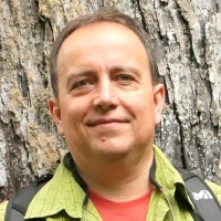 Daniel Vallauri