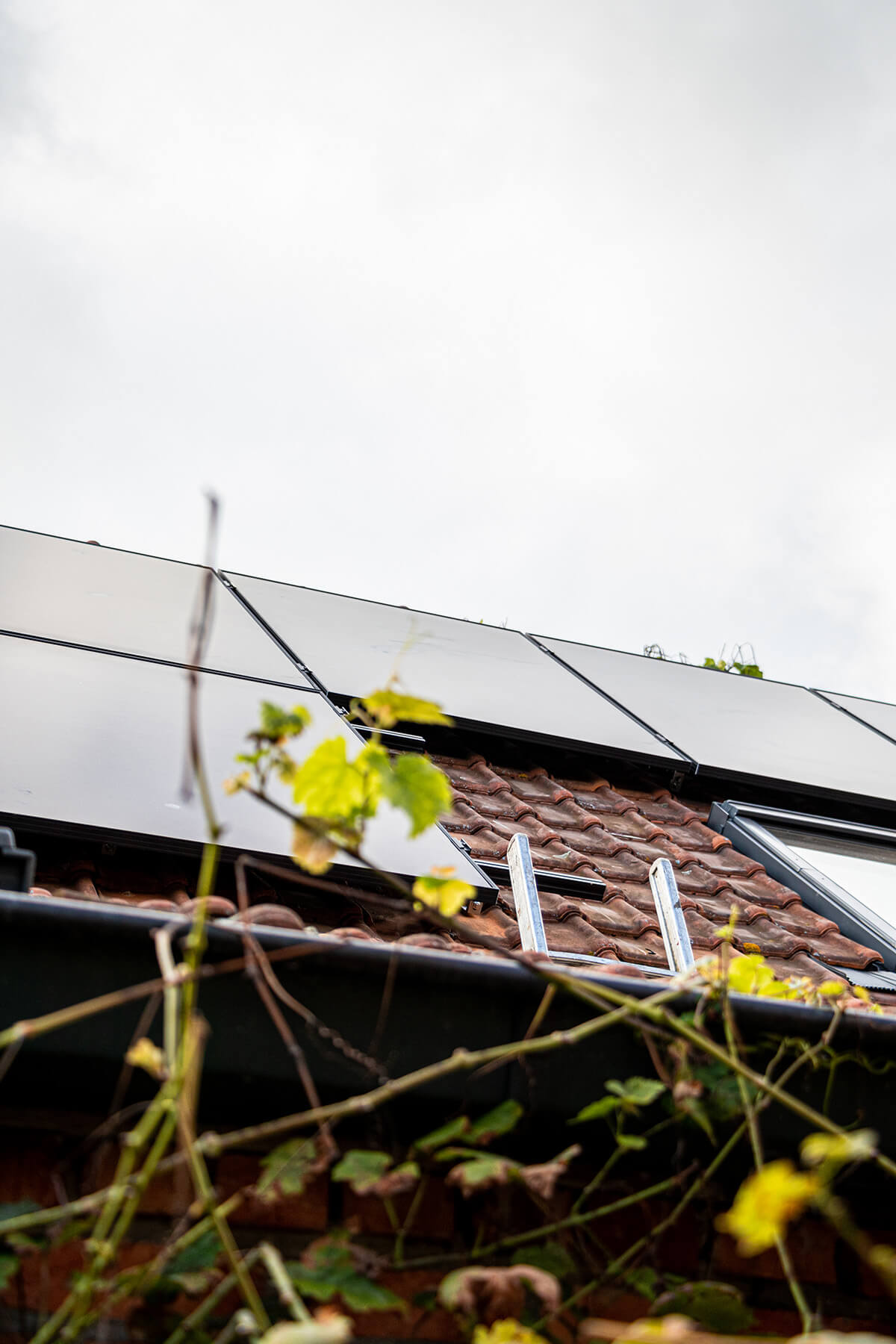 Zonnepanelen op een schuin dak in het waasland