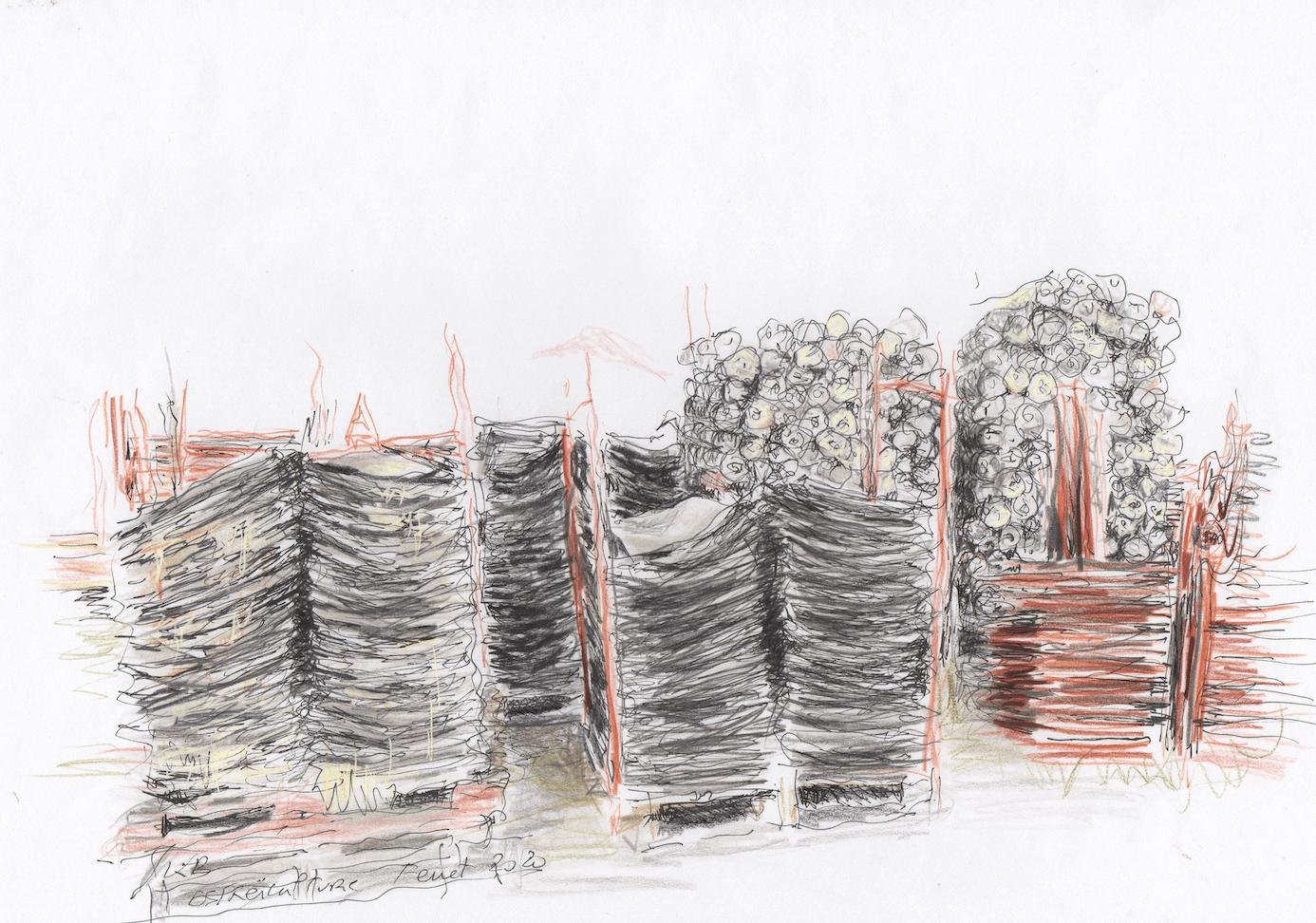 Cap Ferret - Ostréiculture