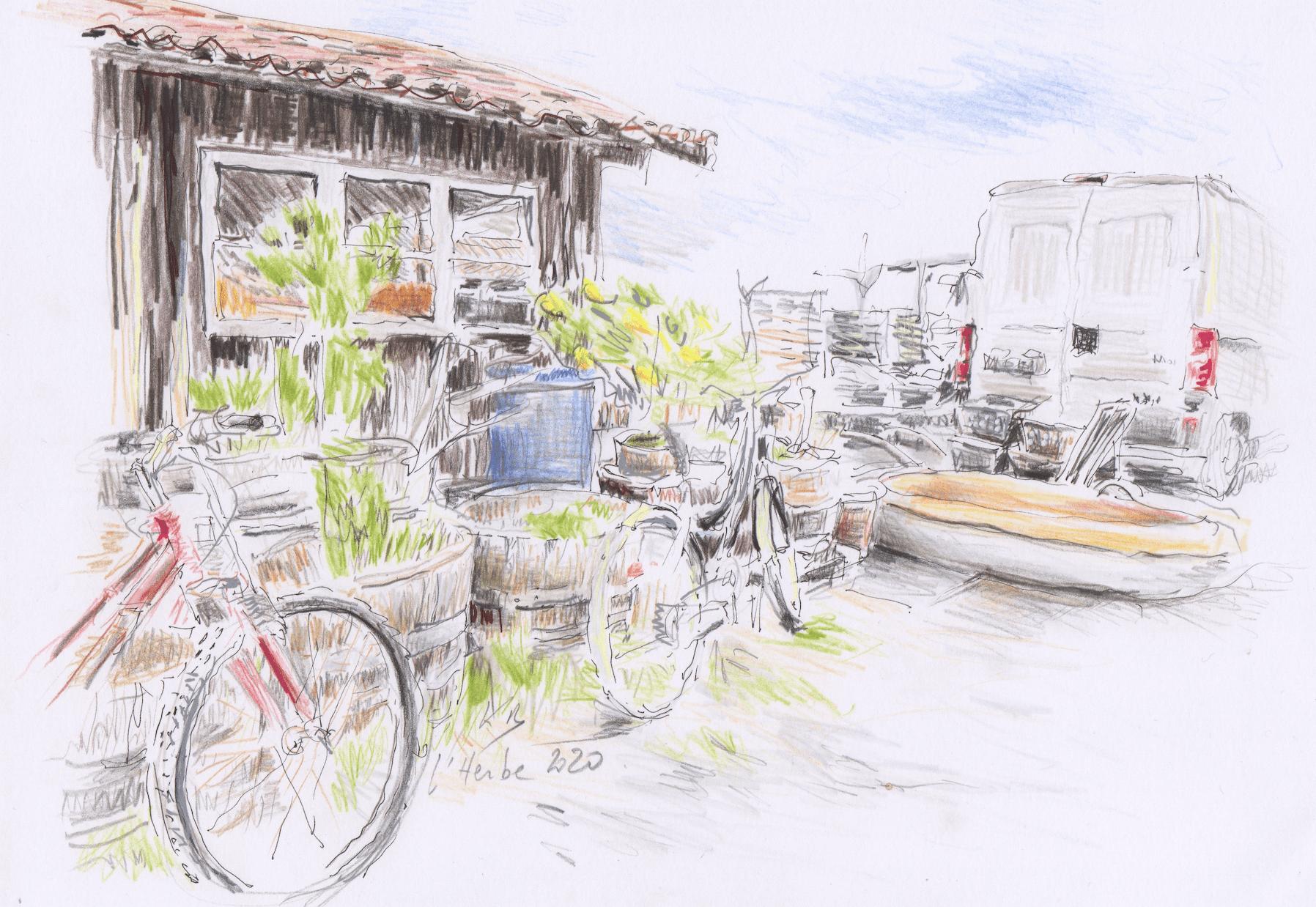 La cabane et les vélos