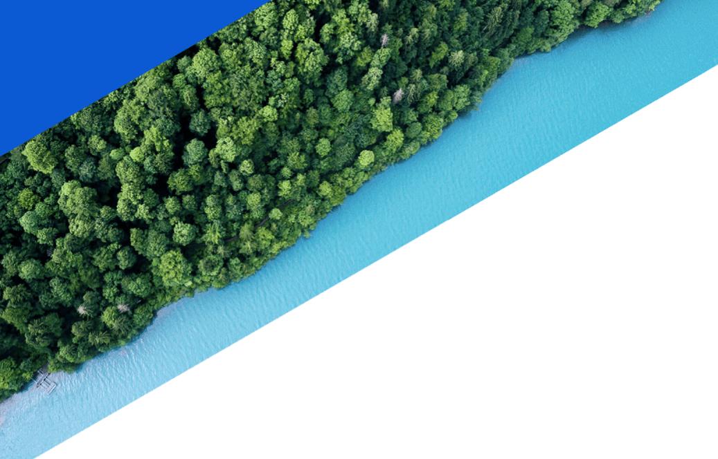 Foto von grünem Wald an türkisblauem Wasser
