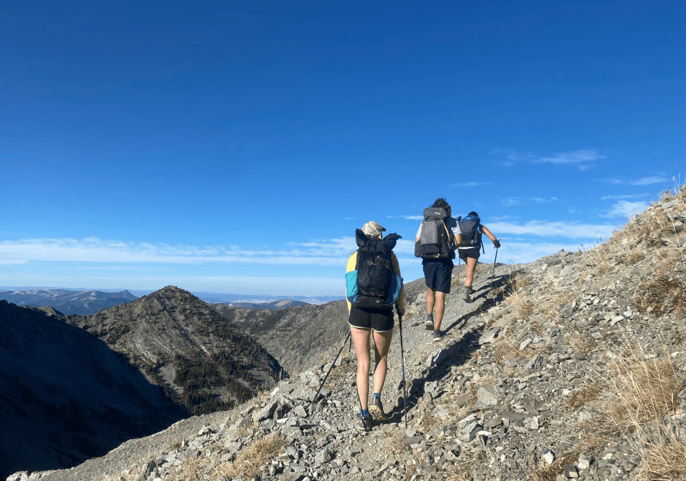 overnight-backpacking-gear-poles
