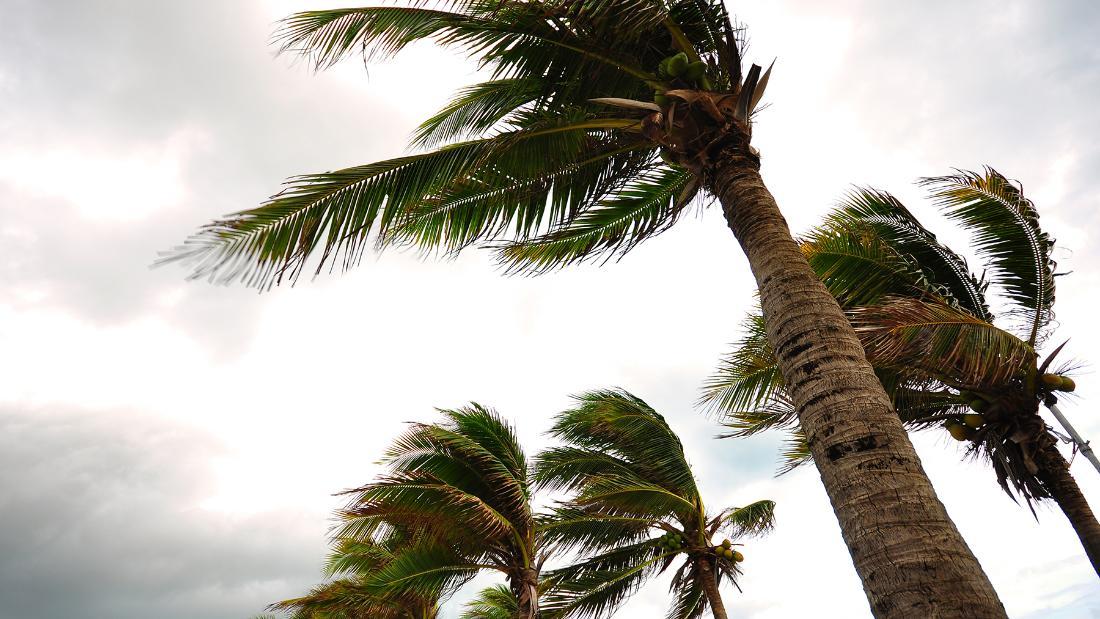 190905094922-hurricanelead-super-169