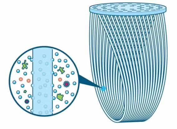 1-filter-membrane-568x415