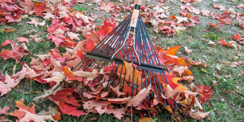 Wirecutter Lawn and Garden aBzOU74_QBiVXRLpcu6yyw