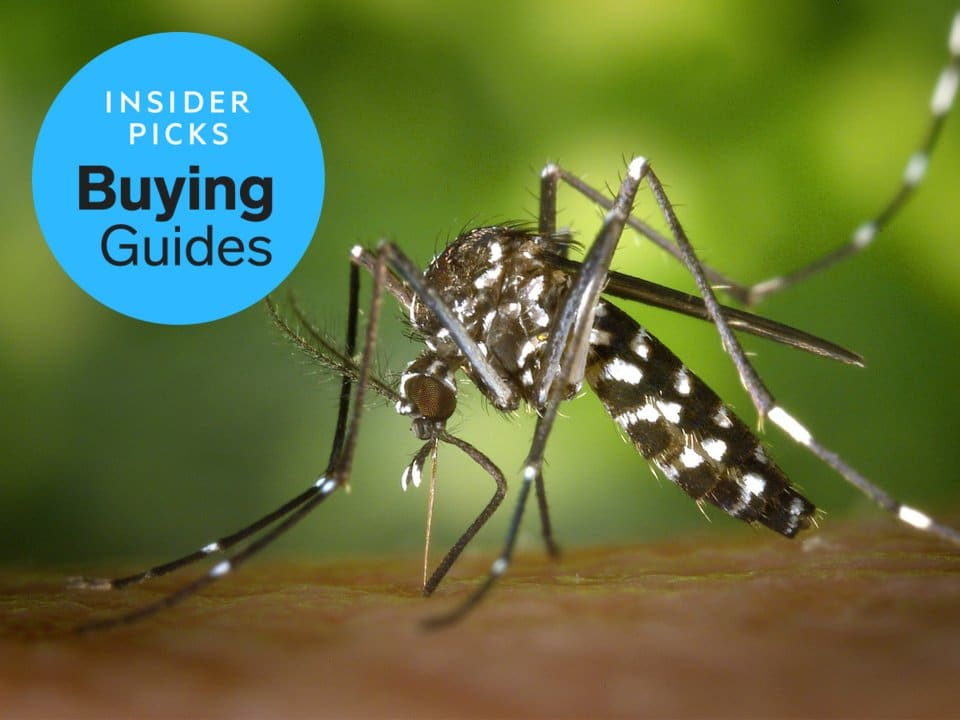 Business Insider Best Bug Sprays