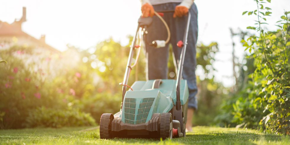Prevention mowing-the-lawn-royalty-free-image-1005528990-1557949408