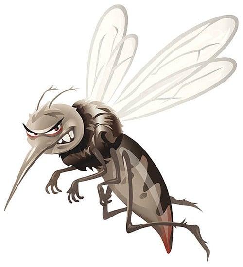Medium Insect Repellent for Field Professionals