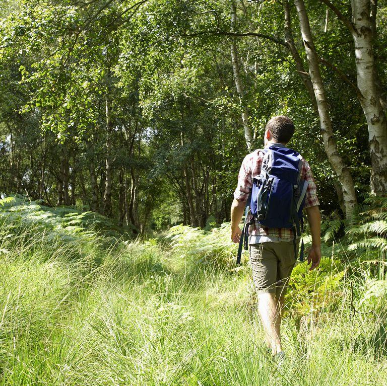Mens Health young-hiker-walking-through-woodland-royalty-free-image-90421933-1558131152
