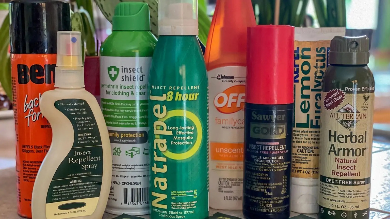 best-insect-repellent-choosing-bug-spray--1536x864